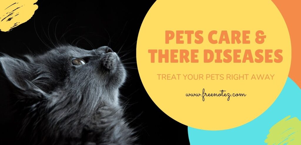 Pets Care: Diseases and their Treatments