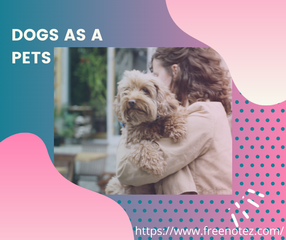 dogs as a pets