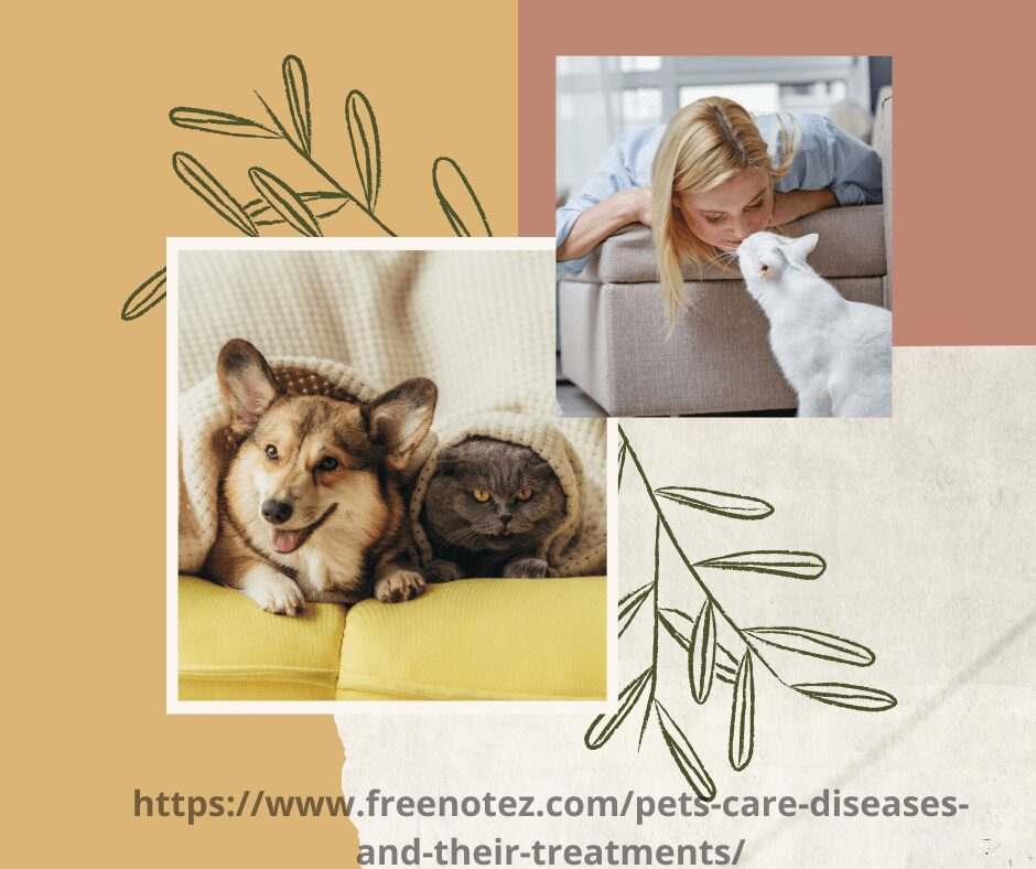 pets-care-diseases-and-their-treatments