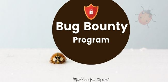 What is a Bug Bounty Program?