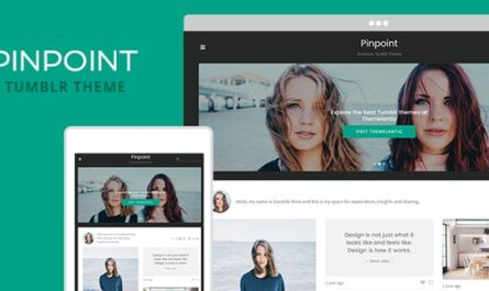 Pinpoint Tumblr Theme Free Download
