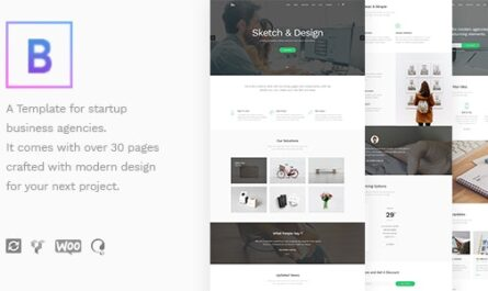 BoTheme 1.3.1 – Startup Business WordPress Theme