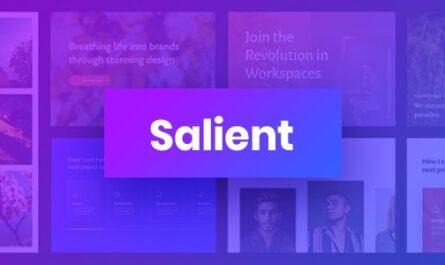 Salient v13.0 – Responsive Multi-Purpose Theme