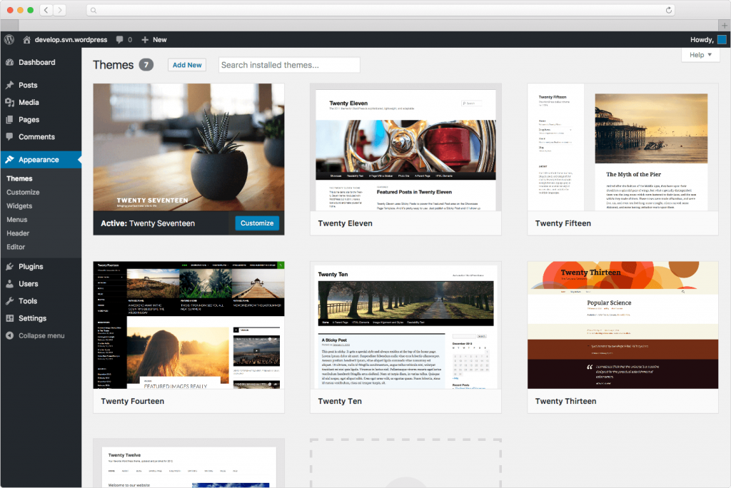 What Are the Best WordPress Themes?