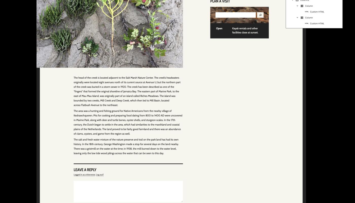 Widgets in WordPress 5.8 and Beyond