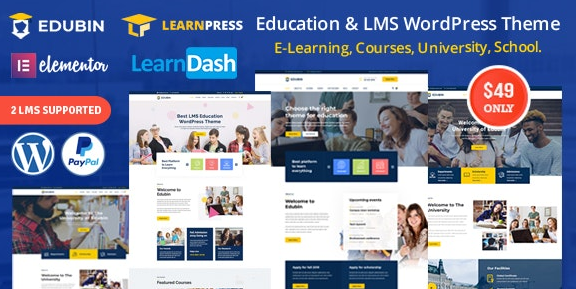 Edubin v6.2.9 – Education LMS WordPress Theme