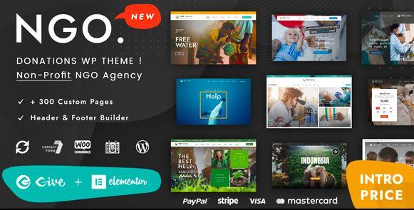 Ngo v1.1 – Charity & Donation WordPress Theme